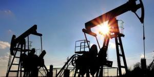 'Petrol fiyatlarını 2020'de sert yükseliş bekliyor'